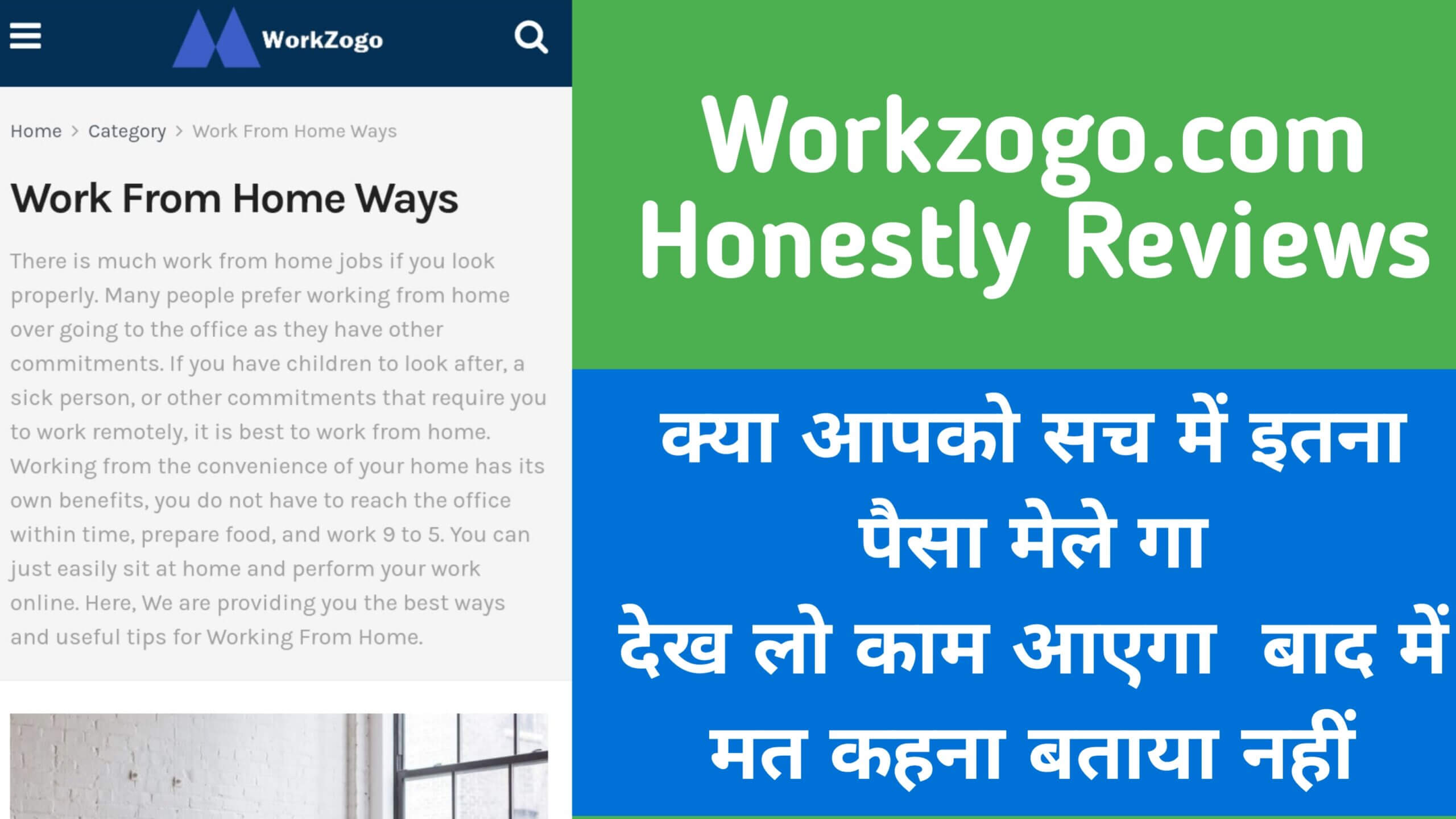workzogo real or fake